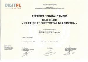 Diplôme Bachelor chef de projet de Gauthier Mespoulede